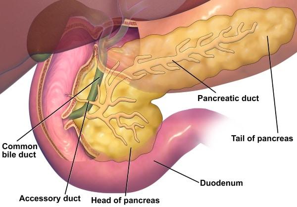 Quistes de páncreas y su tratameinto